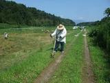 2011-08-04-055_600.jpg