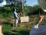 2011-08-06 228_600.jpg