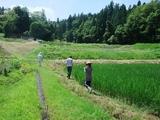 2011-08-07 262_600.jpg