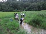 2011-08-23 021_600.jpg