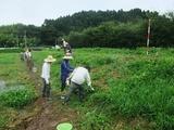 2011-08-24 015_600.jpg