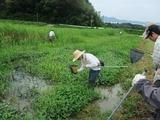 2011-08-24-2 006_600.jpg