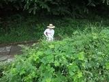 2011-08-26 016_600.jpg