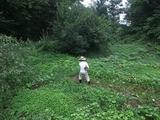 2011-08-26 027_600.jpg