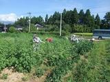 2011-08-29 010_600.jpg