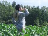 2011-08-29 038_600.jpg
