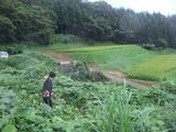 2011-09-01 004_600.jpg