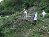 2011-09-04 043_600.jpg