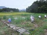 2011-09-04 102_600.jpg
