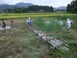 2011-09-04 103_600.jpg