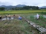 2011-09-04 104_600.jpg