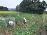 2011-09-04 105_600.jpg