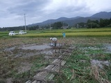 2011-09-04 113_600.jpg
