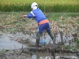 2011-09-04 115_600.jpg