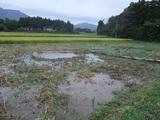 2011-09-04 121_600.jpg