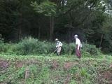 2011-09-05 021_600.jpg