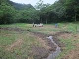 2011-09-05 026_600.jpg